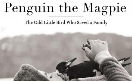 penguin-the-magpie2
